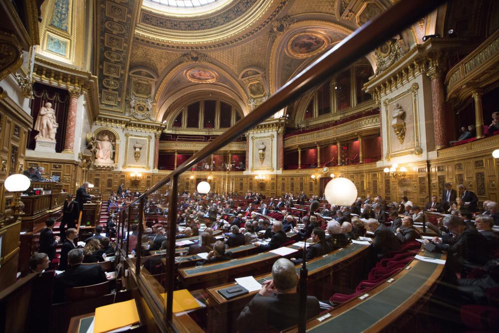 Les sénateurs ont voulu exempter les produits saisonniers de l'encadrement des promotions en volume, mais l'exception se révèle plus large que prévu (Photo © Sénat)