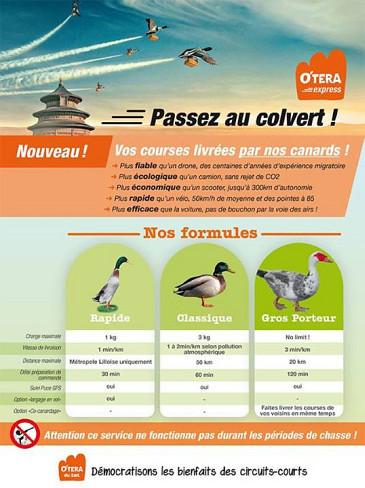Les canards de O'Tera